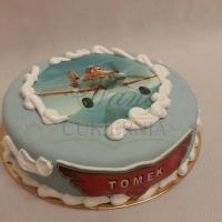 tort samoloty